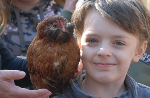 Kinder und Tiere lernen sich kennen